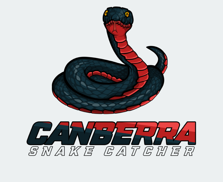 Canberra Snake Catcher - Removal And Relocation Service